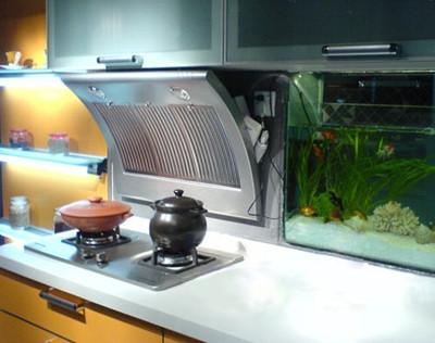 装修厨房前选择什么牌子的油烟机好呢