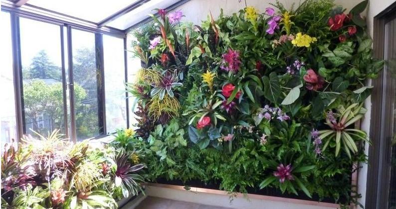 阳台装修 如何绿化