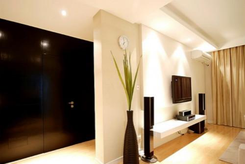 电视背景墙暗门设计