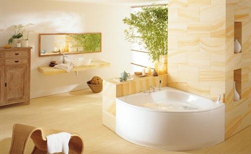 选购浴缸的注意事项